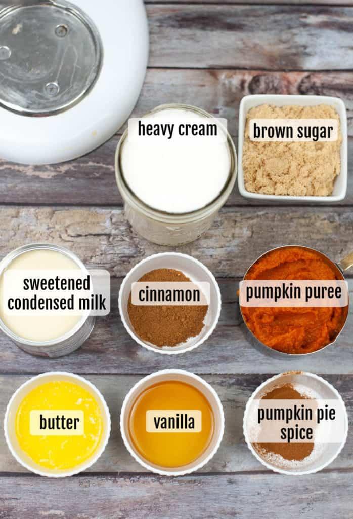 overhead shot of ingredients needed to make pumpkin ice cream