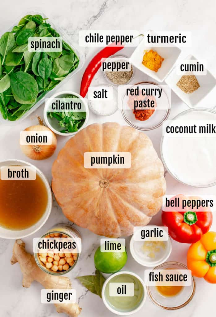 overhead shot of ingredients for Thai Pumpkin Curry